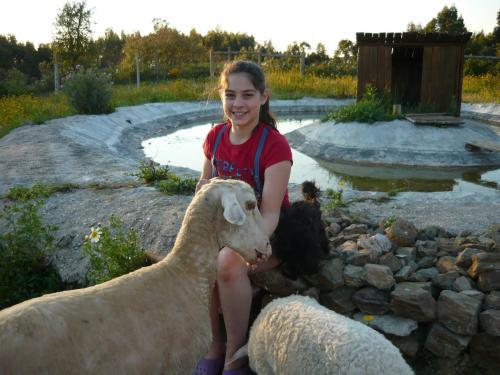 img-Contacto Direto com os Animais