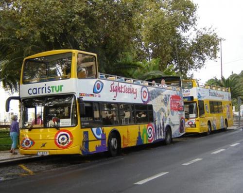 img-TOUR DE AUTOCARRO PANORÂMICO NA MADEIRA, YELLOW BUS