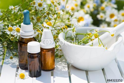destaque Medicamentos homeopáticos no Porto
