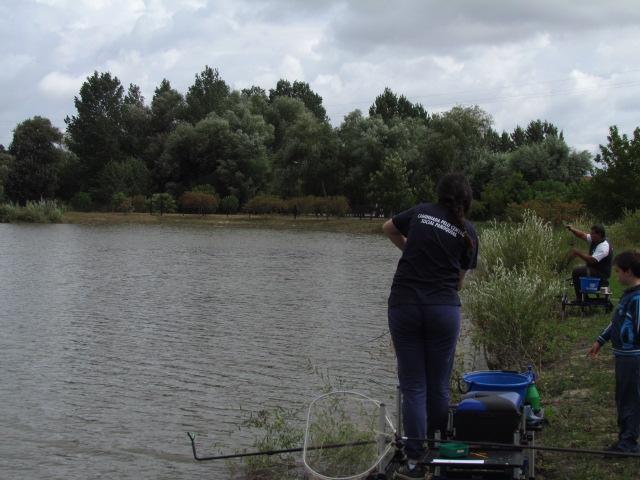 Artigos de pesca sp