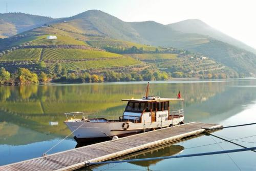DOURO CRUISE WITH LUNCH AND TASTINGS AT BOMFIM'S VINEYARDS