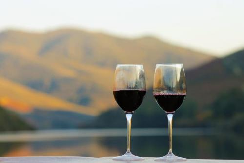 tt3DOURO CRUISE WITH LUNCH AND TASTINGS AT BOMFIM'S VINEYARDS2 thumbs