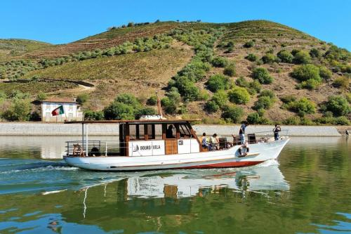 DOURO CRUISE WITH LUNCH AND TASTINGS AT BOMFIM'S VINEYARDS, 4H30