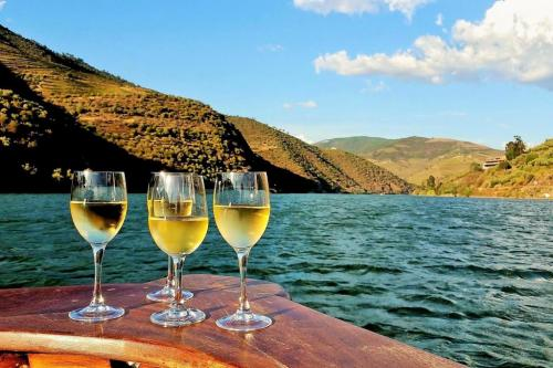 tt3DOURO CRUISE WITH LUNCH AND TASTINGS AT BOMFIM'S VINEYARDS, 4H302 thumbs