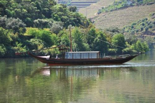 img-DOURO CRUISE FROM PINHÃO TO TUA RIVER