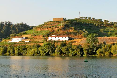 img-DOURO CRUISE FROM PORTO TO RÉGUA, DOWNSTREAM ON WEEKENDS