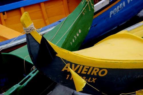 tt3CRUZEIRO NO RIO TEJO PELA ROTA DOS AVIEIROS2 thumbs