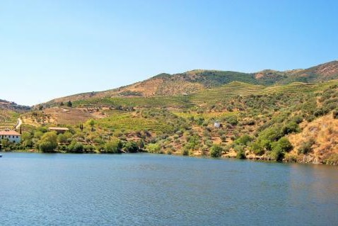 img- CRUISE FROM PORTO TO RÉGUA WITH VISIT AND WINE TASTING