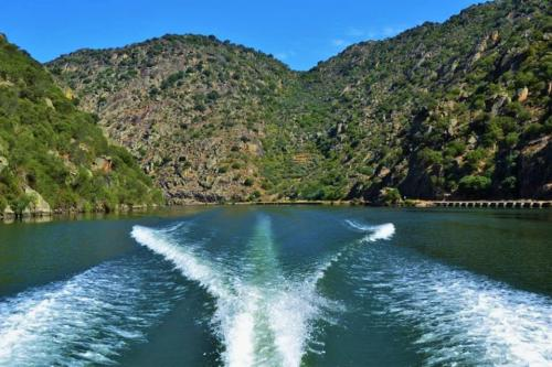 tt2-7 DAYS' DOURO CRUISE IN EXCLUSIVE YACHT1 thumbs