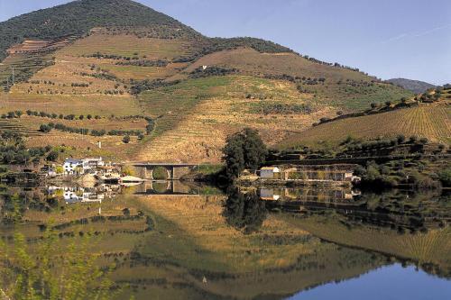 img-CRUISE PORTO RÉGUA WITH RETURN BY TRAIN, 2 DAYS