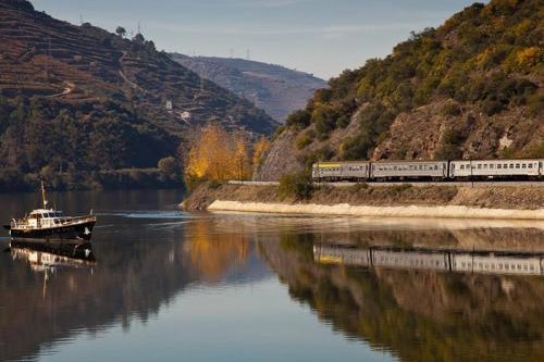 VINTAGE CRUISE IN THE UPPER DOURO