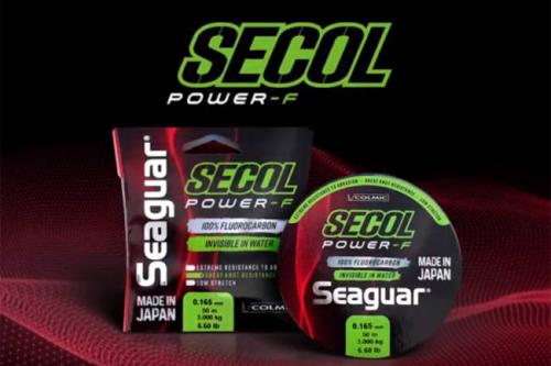 img-FIO SECOL POWER-F