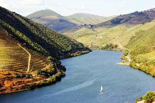 img-CRUISE IN DOURO RIVER WITH WALKING TOUR