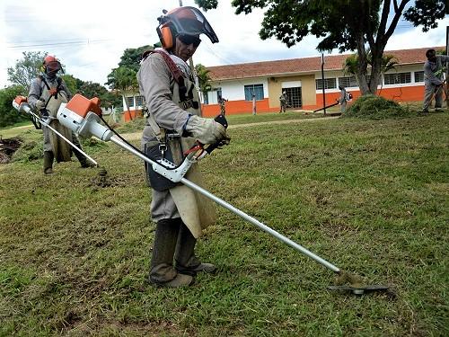img-Limpeza de Quintas em Gondomar