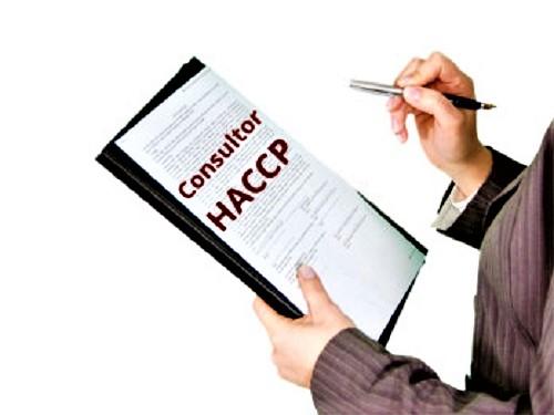destaque Consultoria HACCP