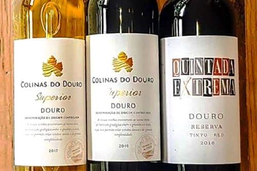 img-Provas de Vinhos e Petiscos no Porto, até 10 pessoas